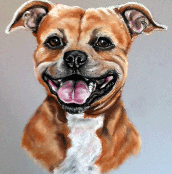 dog painting portraits