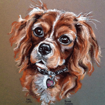 dog art prints